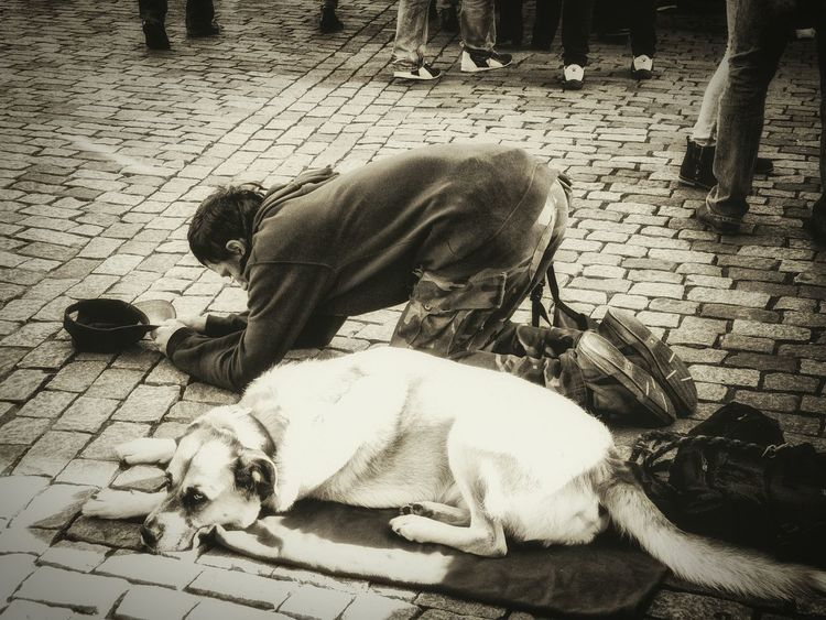 The Human Condition Capture The Moment Photos That Will Restore Your Faith In Humanity On Street Compassion Human Our Best Pics RePicture Travel We Are Family Shades Of Grey