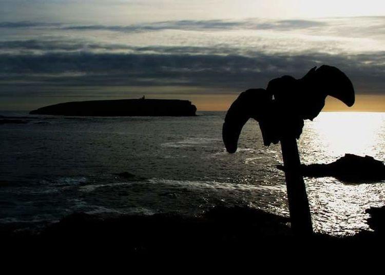 Island Life Seascape Whalebone Broughofbirsay Enjoying Life Orkneyislands Lifeasiseeit Johnnelson Scotland Water Sunset