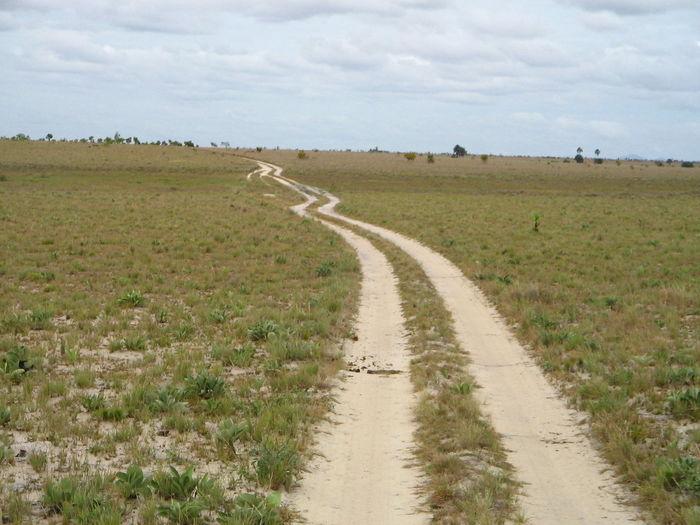 EyeEm Selects Road Winding Road Tire Track Rural Scene Sky Grass Landscape Cloud - Sky Empty Road Country Road White Line Road Marking The Way Forward Asphalt Roadways