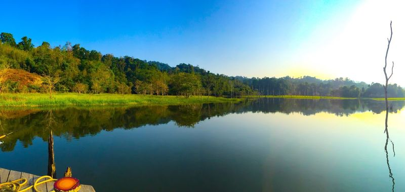 Nature Reflection Water Tree Beauty In Nature Lake Tranquil Scene Clear Sky Sky Scenics Tranquility Idyllic No People Sunlight Outdoors Growth Day Landscape