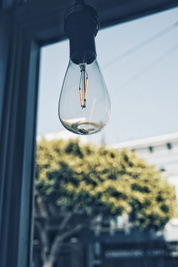 Lightbulb in front of a window Swinginginaplumtree Light Lights Lightbulb EyeEm Selects Glass - Material Transparent Focus On Foreground Hanging Low Angle View Lighting Equipment Close-up No People Window Sky Selective Focus Light