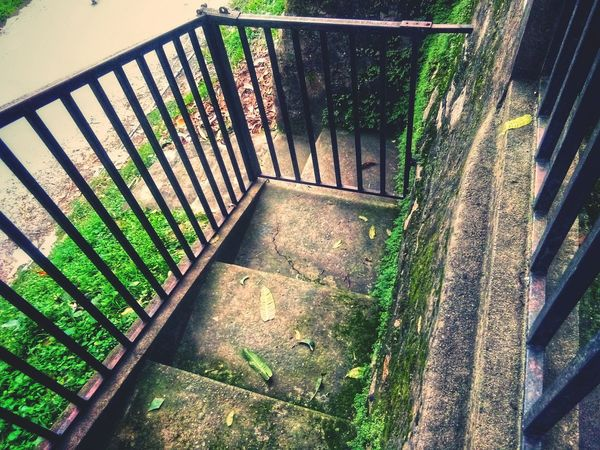 Mossy Stairs Assam, India High Angle View Shadow Stairway Steps Staircase Railing Hand Rail Stairs