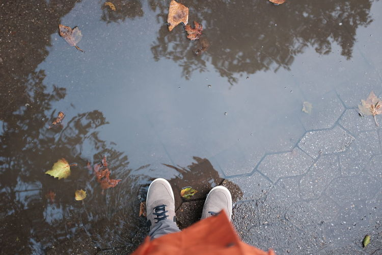 Low section of man standing in puddle