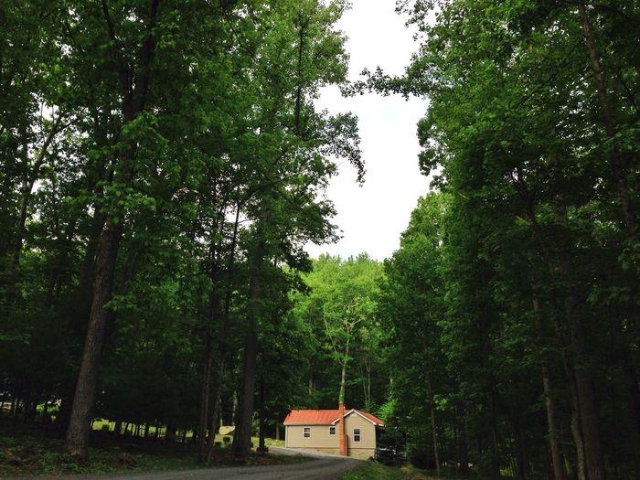 Shenandoah Cabin