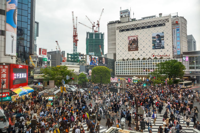 Tokyo, Japan: aerial view from Occitane Cafe of unidentified pedestrians in Shibuya Crossing, one of the busiest crosswalks in the world.Shibuya Crossing a popular attraction in Tokyo City Crosswalk Japan Japanese  Japanese Culture Road Shibuya Shibuya Crossing Shibuya Tokyo Tokyo Tokyo Street Photography Tokyo,Japan Traffic Traffic Jam Aerial View Architecture Building Building Exterior Built Structure City City Life City Street Crosswalks Crowd Day Group Of People Large Group Of People Nature Office Building Exterior Outdoors Pedestrians Pedestrians Walking People Popular Photos Real People Road Shibuya Station Sky Street Transportation