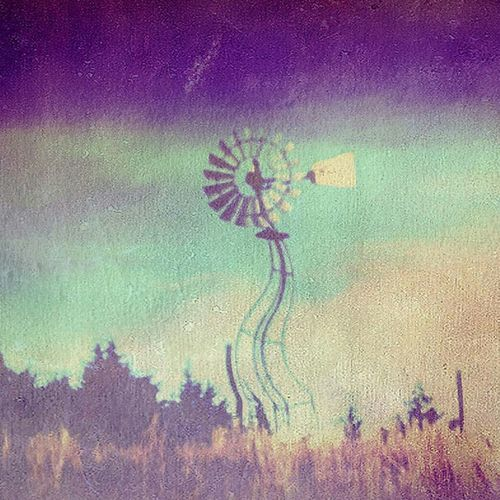 Nebraska Windmill Feild Outdoor Photography