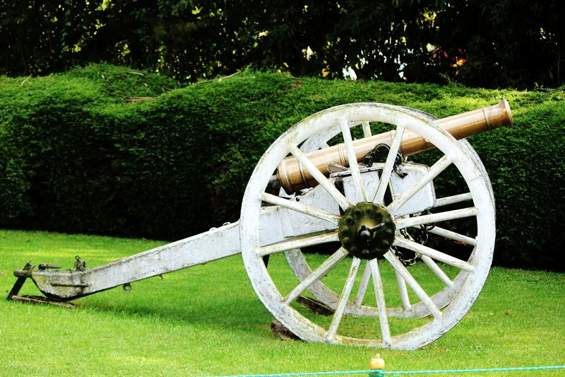 Cannon was used to kill, now showcased! Grennery Beautiful Cannonphotography EyeEm Selects Kinda Cool Cannon Close-up Lug Indiapictures Indian Landscape Landscape_Collection Landscape_photography Killermachine Killer Bomb Exposive Attractions❤️ Attraction White Color BeSpoke Launcher No People Growth Nature Wagon Wheel Watermill