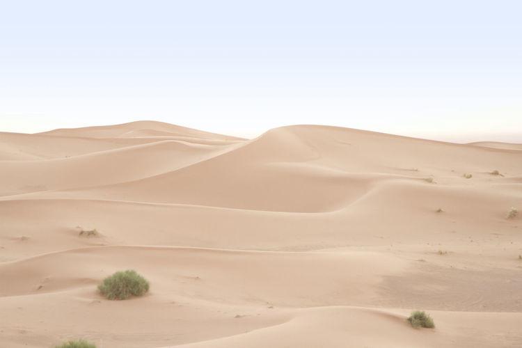 Scenic view of sandy desert against sky