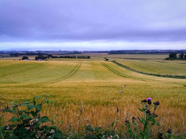 Scotland HuaweiP9 Nature Fields Blairgowrie Alyth Weet Farmland Farming Hills And Valleys Breathing Space Smartphonephotography