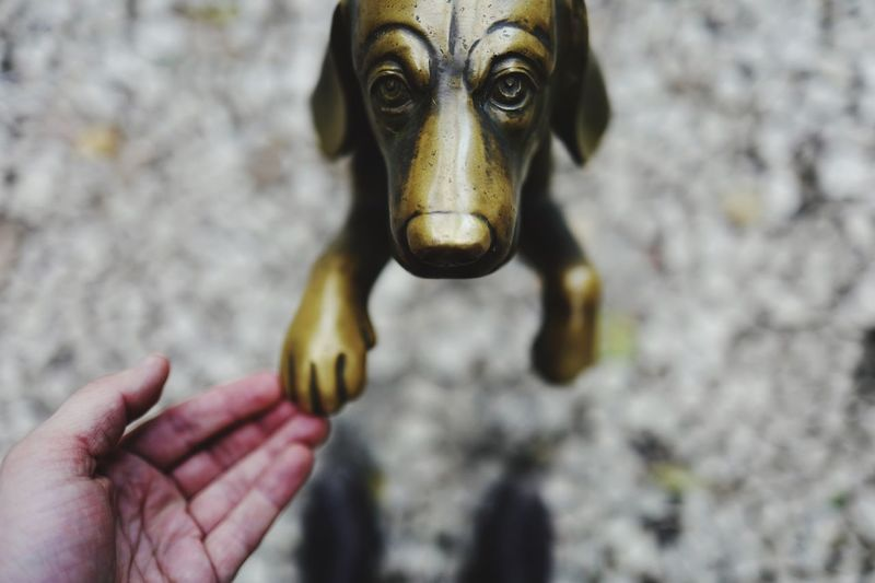 Cropped image of hand touching dog statue on floor