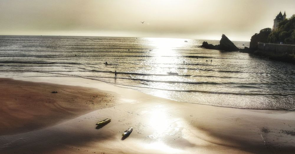 Surf Landscape