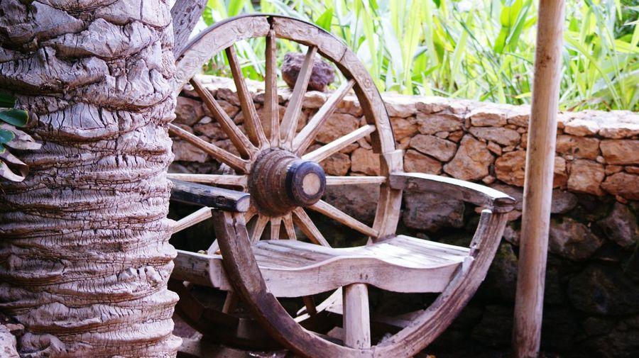 Close-up of wheel on wood