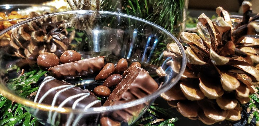 Decoration Festive Season Darryn Doyle Check This Out Pine Cone Chocolate Celebration Centerpiece Water UnderSea Close-up Animal Themes