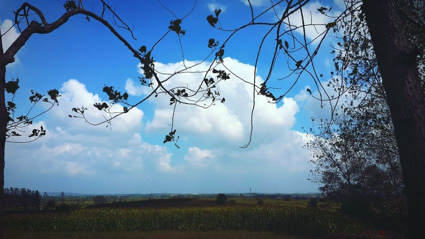 Enjoying Life Taking Photos Hanging Out Colour Of Life Clouds Memories ❤