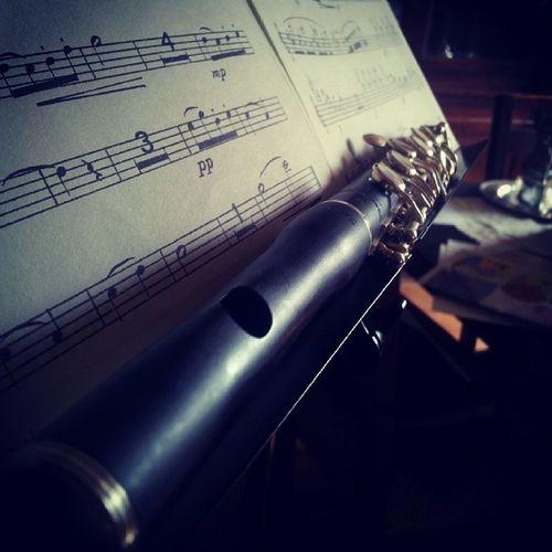 Così piccolo eppure così grande ♥ Piccolo Flute Pearlflute Pearlpiccolo ottavino music ninorota black light silver ilovemusic