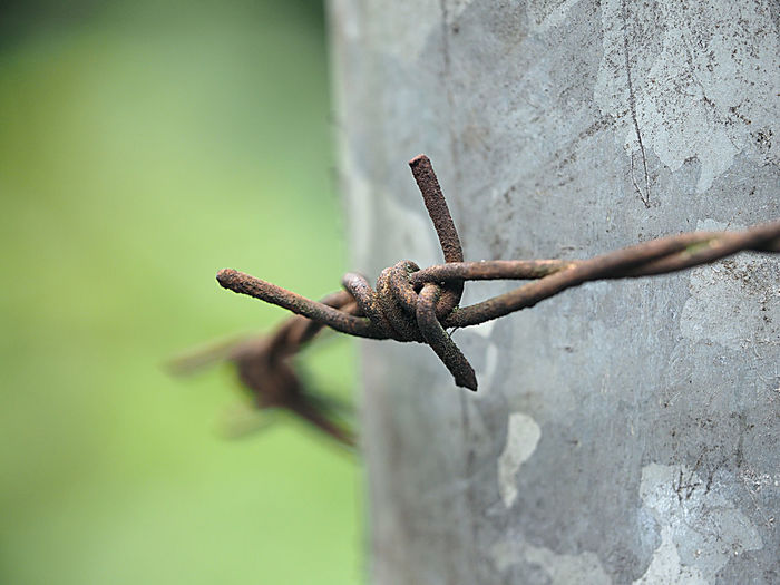 Close-Up Of Rusty Barbed Wire On Old Wall