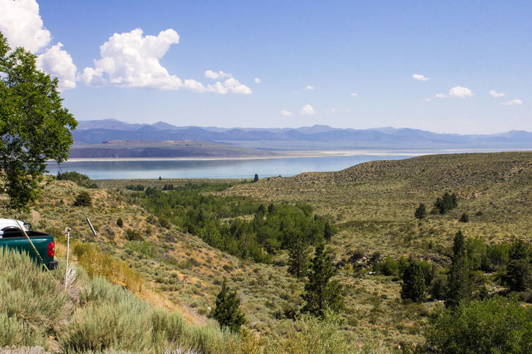 Mono Lake, a large, shallow saline soda lake in Mono County, California, with tufa rock formations Beauty In Nature Day Grass Growth Lake Landscape Mono Lake Mono Lake California Mountain Nature No People Outdoors Scenics Sea Sky Tranquil Scene Tranquility Tree Tufa Water