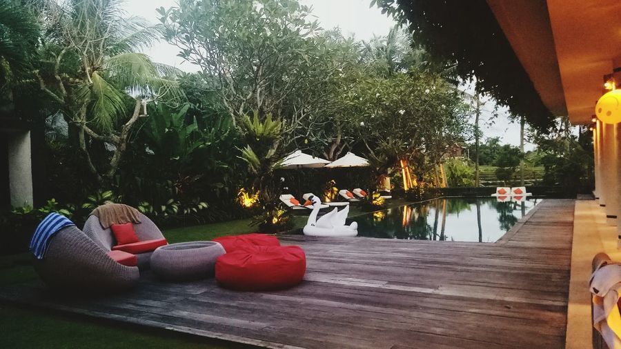 comfort zone Pura Purapura Gung Gungmandrax Place Calm Poolside Pool Relax Swimming Pool Bali Bali, Indonesia Comfort Enjoying Life First Eyeem Photo