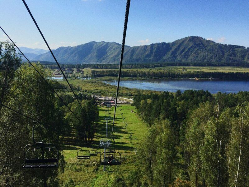 Tree Cable Nature Overhead Cable Car Sky Growth Hanging Landscape Mountain Range Mountain Outdoors Scenics Lake Day Beauty In Nature Steel Cable No People Ski Lift Swing Water Altay Nature Reserve