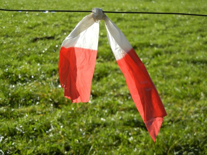 Cloth tied on wire over grassy field