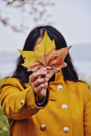 Hide Yellow Fall Season  Mask Face One Person Yellow Real People Leaf Holding Plant Part Front View Autumn Lifestyles Women Headshot Human Hand Close-up A New Perspective On Life