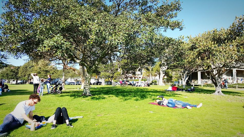 Great weather to chill in the park by the water. Galaxys6