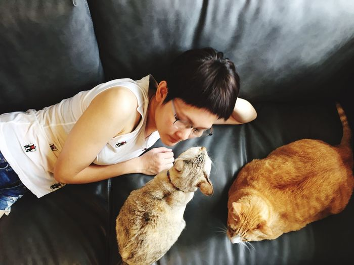 High angle view of woman with cats lying on sofa at home