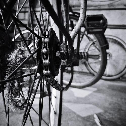 EyeEm EyeEm Best Shots EyeEm Selects EyeEm Gallery EyeEmBestPics EyeEmBestPics EyeEm Best Edits EyeEm Phillipines Bicycle Rack Spoke Bicycle Land Vehicle Gear Stationary Metal Wheel Close-up Pedal Locked Tire Lock Vehicle Part Racing Bicycle Handlebar