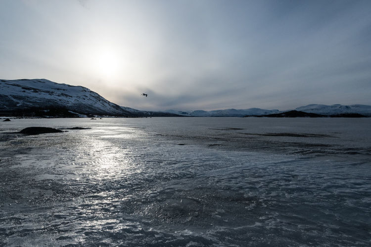 Abisko Shore 12 Abisko Beauty In Nature Cold Temperature Day Iceberg Lake Mountain Mountain Range Nature No People Outdoors Scenics Sky Snow Sweden Tranquil Scene Tranquility Water Waterfront Winter