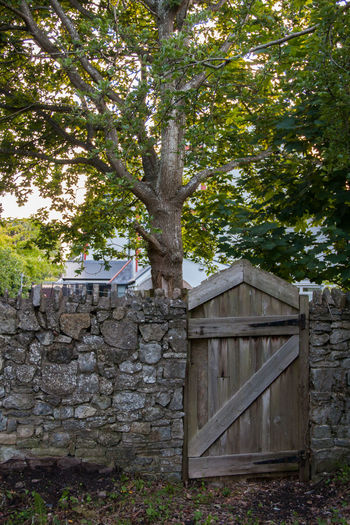 Architecture Brick Wall Brick Wall Built Structure Crooked Garden Gate No People Old Quaint  Run-down Rustic Tree Wood - Material