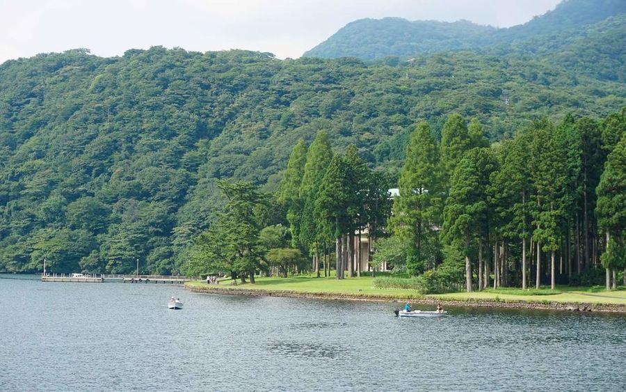 Here Japan Lakeashinoko Intothewild Outdoors Nature Wilderness Forest Lake Peace Love Unwind Relaxation EyeEmNewHere The Great Outdoors - 2017 EyeEm Awards EyeEm Best Shots