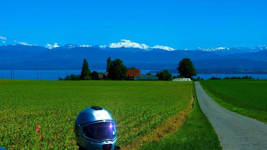 The helmet, the