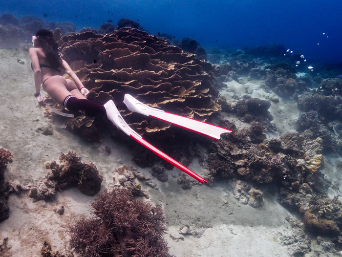 Freediving sexy girl