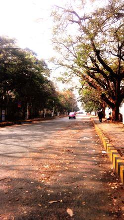 One Summer's Morning in Bengaluru. Relaxing Taking Photos Nammabengaluru Friday Mornings