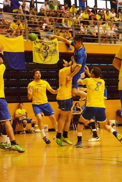 Handball Handball Is My Life Competition Basketball Player Real People Sports Team Competitive Sport Team Sport Indoors  Playing Leisure Activity Togetherness Large Group Of People Day Teamwork Court Sports Uniform Sport Basketball - Sport Men People