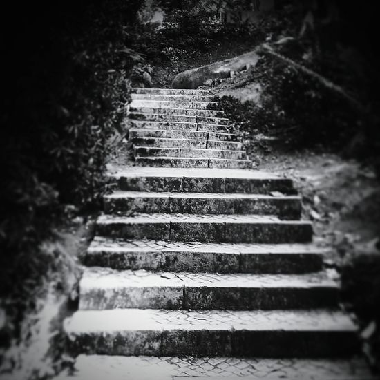At the end of the stairs i hope it lead us to that special place 😶 thank you Taking Photos Relaxing Nature