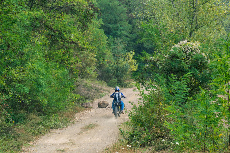 Rear view of man riding motorcycle on dirt road amidst trees