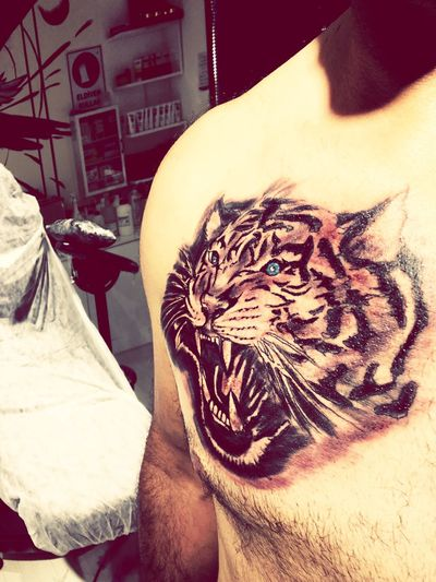 Kızılay Ankara Tattoo Raneztattoo Tattoomodels Tattooed Piercings Piercing Tattoo ❤ Tattooartist  Tattoos Tattoo Life Tattooedgirls PiERCiNGS & TATTOOS Piercing🔥 Karanfilsokak Kızılaydövmeci One Animal Animal Themes Mammal Tiger Animals In The Wild Whisker Feline No People Pets Indoors  Day Domestic Animals Close-up civar up