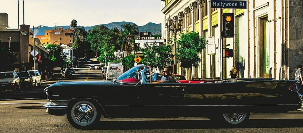 Everyday Joy Hollywoodblvd California Urban Lifestyle