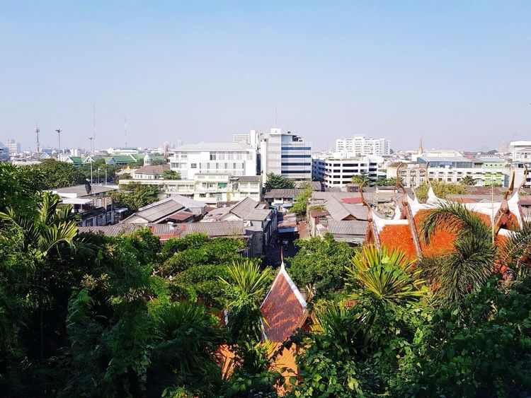 Blue Sky Palm Trees Thailand Bangkok ASIA Architecture Building Exterior High Angle View Cityscape Outdoors Built Structure Clear Sky Day City No People Tree