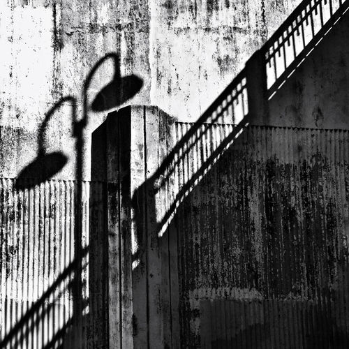 Dramatic mid-day shadows along the river in Austin, TX Austin Austin Texas IPS2015Light Lamp Post Railing Shadows IPS2016Composition IPhoneography Architecture Rail Pattern Pieces