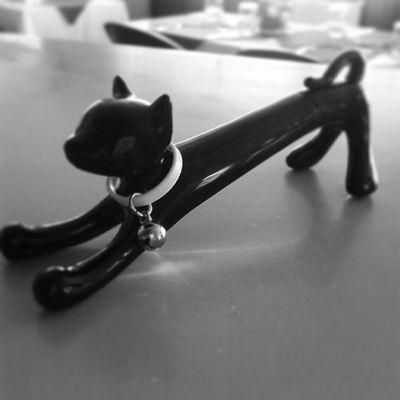 Amei minha nova caneta. Gatinho Imaginarium Caneta Instamood