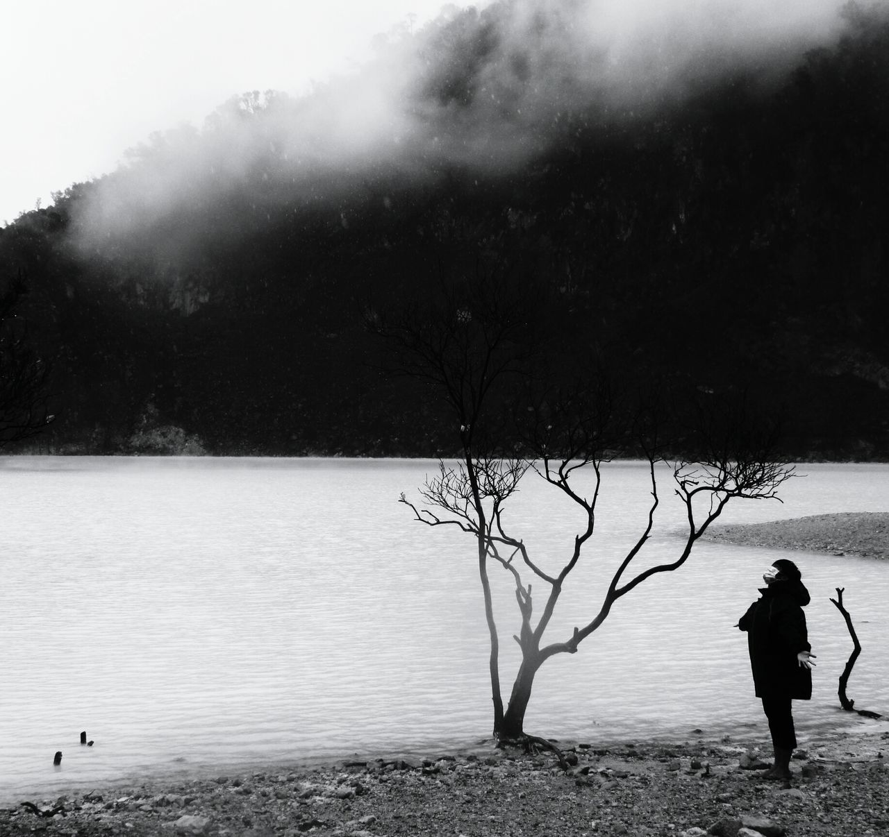 Person Looking At Bare Tree And Standing By Lakeside