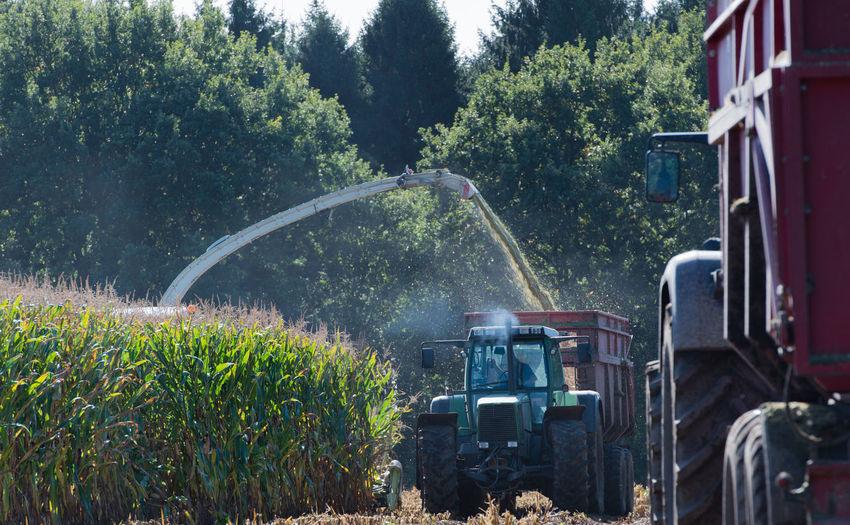 Combine harvester harvesting in farm