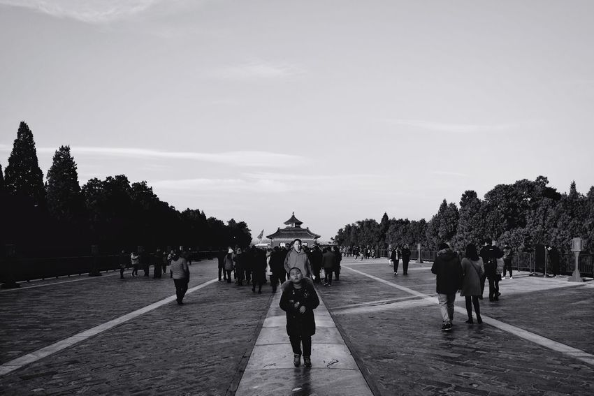 Large Group Of People People Adults Only Walking Tree Adult Politics And Government Only Men Men Outdoors Sky Day City Light And Shadow FUJIFILM X-T10 Beijing, China Temple Of Heaven Park Black And White Old Buildings King - Royal Person History Palace Travel Old Building  Silhouette