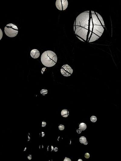 No People Illuminated Outdoors Cristmas