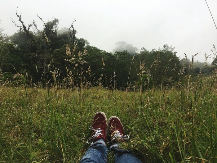 Personal Perspective Grass Outdoors Sky Haze Melancholic Landscapes Nature_collection Nature Mothernature Mountain Wildlife Reflection Peace And Quiet Peace Green Green Green!  Mother Nature