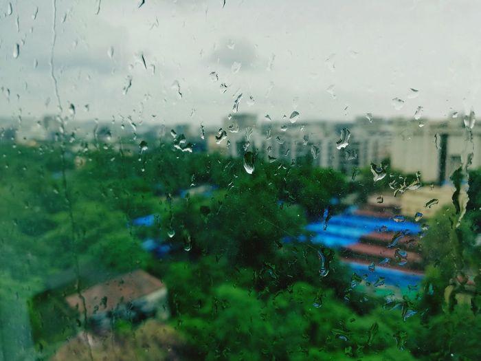Monsoon Water Tree Drop Window Wet RainDrop Backgrounds Rain Glass - Material Close-up
