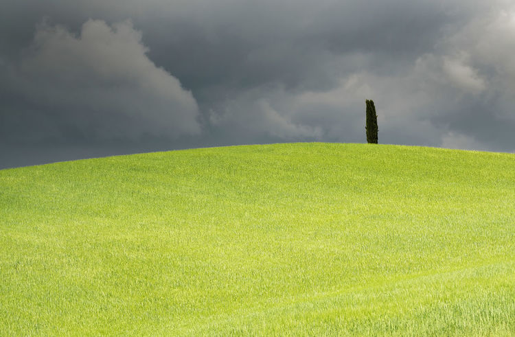 Agriculture Hills Tuskany Beauty In Nature Cloud - Sky Cloudy Stormy Cypress Trees  Day Environment Field Grass Green Color Land Landscape Nature No People Non-urban Scene Ominous Outdoors Plant Power In Nature Scenics - Nature Sky Storm Tranquil Scene Tranquility
