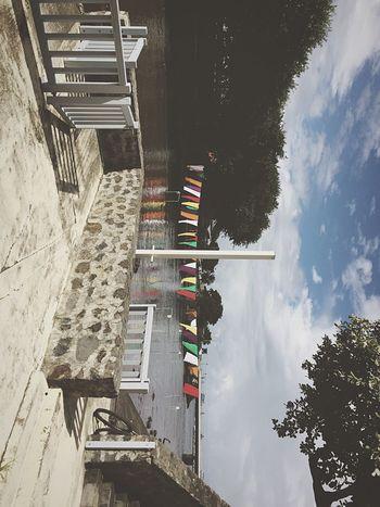 Jolly Roger Color Reunion Island Good Morning
